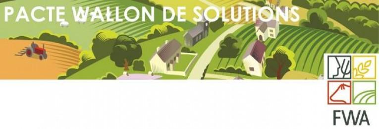 le-pacte-wallon-de-solutions